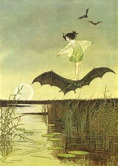 Ida Rentoul Outhwaite ~ The Witch's Sister on Her Black Bat ~ The Enchanted Forest ~ 1921