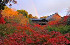 I Love kyoto autumn で東福寺の紅葉は最高です!言葉をなくす美しさです! 紅葉を見るなら東福寺がオススメ!!見どころをチェック♪ MERY [メリー]