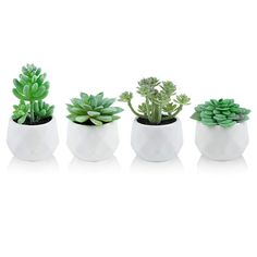 Small Fake Plants, Fake Succulent Plants, Fake Plants Decor, Room With Plants, Artificial Succulents, House Plants Decor, Plant Decor, Bedroom Inspo, Bedroom Ideas