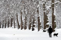 #london #winter #snow