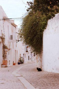 Ibiza : Dalt Vila : Attitude at Rome
