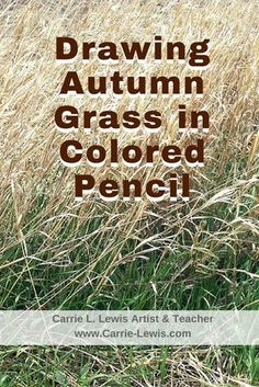 Drawing Autumn Grass in Colored Pencil