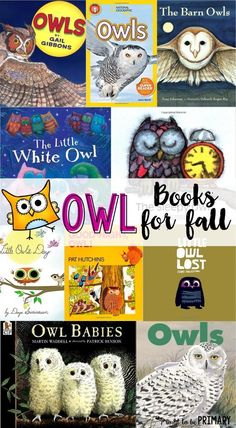 BOOK TITLES-- Lists for teachers of favorite children's books for fall. Includes fiction and non-fiction books about pumpkins, leaves, spiders, bats, and owls. Autumn Activities, Book Activities, Preschool Activities, Preschool Learning, Kindergarten Reading, Teaching Reading, Kindergarten Science, Owl Classroom, Classroom Ideas