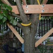 Construction d'une cabane dans un arbre