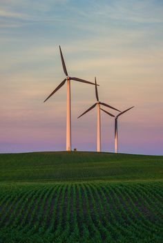 Wind Farming by Cheryl Bouman on Capture Minnesota. In southwestern Minnesota, there is an area known as the Buffalo Ridge. It is 1,995 feet above sea level at its highest point. It is known for its windy conditions and windmills. 2014-06-20; Ruthton MN.