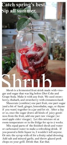 Shrub - a fermented fruit drink that can be made with any fruit!
