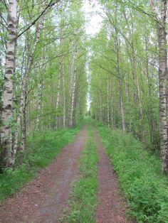 Rimmi, Suomi