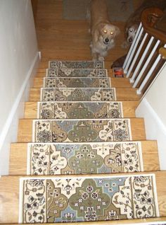 Carpet Stair Runners On Pinterest Carpet Stairs Stair