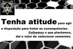 ❖ ∂ιηηнσ¹ ❖ @PereiraLimadp ❖ facebook.com/dinnho.1