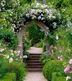 Its like the passage to the secret garden.