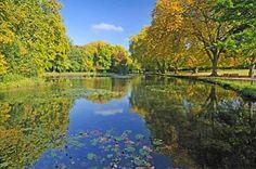 Le parc | Château de Cheverny