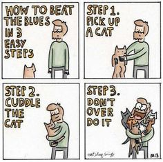 how to beat the blues... #cats
