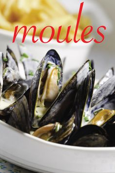 moules frites | sippity sup