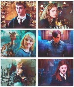 Harry, Hermione, Luna, Neville, Ron, and Ginny