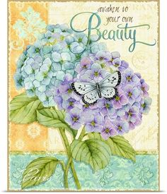 Hydrangeas - Beauty By: Joy Hall