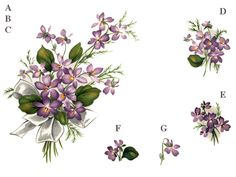SWEET VIOLETS Sizes available A 112 x 65 mm B 84 x 50 mm C 68 x 42 mm D 40 x 30 mm E 32 x 22 mm F 22 x 14 mm G 18 x 14 mm