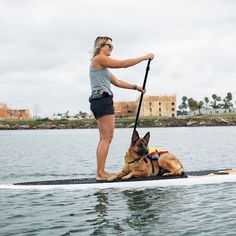 Bild könnte enthalten: eine oder mehrere Personen, Ozean, Himmel, im Freien, Wasser und Natur #sup #isup #inflatablesup #paddleinspiration #paddleboard #dogpaddling Inflatable Sup, Standup Paddle Board, Paddle Boarding, Big Dogs, Racing, Instagram, Ocean, Heaven, Outdoor