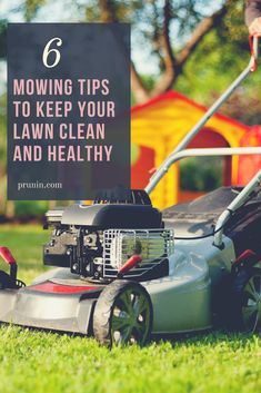 The look of your lawn is dependent on how it is mowed. Different people have different lawn mowing tips to make their yard look beautiful. Here are simple mowing tips to keep the lawn clean and healthy.