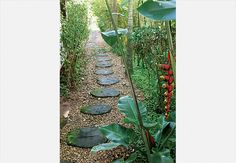 O caminho feito com toras de madeira deixa o visual do corredor selvagem e rústico