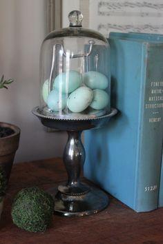 Blue Egg Brown Nest Refinished Vintage Furniture  Interiors www.blueeggbrownnest.com