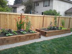 Raised Flower Bed Along Fence Garden along fence Green Thumb