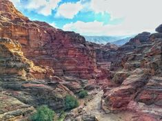 Petra, Jordan - what you need to know before visiting - Go Restless New Seven Wonders, Rose City, World Heritage Sites, Petra, Need To Know, Grand Canyon, Travel, Viajes, Destinations
