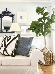 """I know there's a lot of talk on blogs about whether the ever-popular fiddle leaf fig tree is """"in"""" or """"out"""" in decorating, but when you think about it, isn't it kind of silly to put any plant in a trend category? seagrass basket, white couch, blue, white, black, fiddle leaf fig tree"""