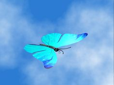 blue butterfly 3ds free