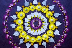 Artist Kathy Klein Creates Amazing Mandalas with Flowers and Seeds | Inhabitat - Sustainable Design Innovation, Eco Architecture, Green Buil...