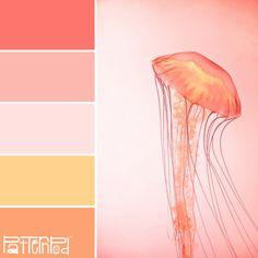 Jellied #patternpod #patternpodcolor #color #colorpalettes, nice color tablette Pink Color Schemes, Colour Pallete, Color Combinations, Color Palettes, Sunset Colors, Color Studies, Sunset Palette, Color Theory, Jelly Fish
