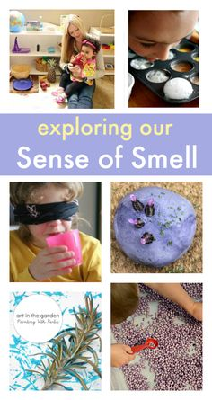 sense of smell activities for babies and toddlers, exploring our senses, sensory play, senses theme
