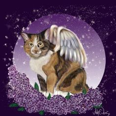 Ash Evans Angel lilac cat print by AshEvans on Etsy, $15.00