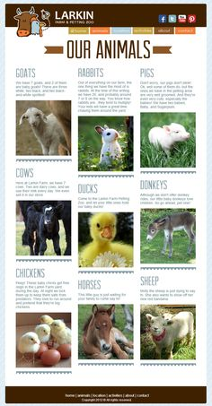 Larkin farm and petting zoo. love the color scheme