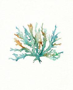 No. 2 Sea Coral Art Print