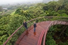 Treetop canopy walkway through Kirstenbosch National Botanical Garden in Capetown, South Africa inspired by a snake's skeleton Oh The Places You'll Go, Places To Travel, Places To Visit, Vacation Destinations, Vacation Spots, South African Holidays, National Botanical Gardens, Travel Channel, Urban