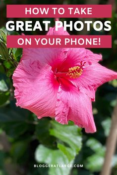 We may be living a self-isolation life right now, but these 6 easy tips for how to take great photos on your phone are great for now on our social distance walks, the budding photographers in your life, and tips for when we can travel again!   #phototips #photographytips #iPhonephoto
