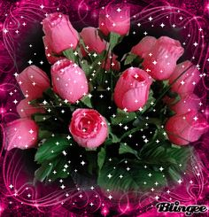 FLORES ENCONTRADAS EN LA WEB Beautiful Rose Flowers, Flowers Gif, Beautiful Flowers Wallpapers, Glitter Flowers, Beautiful Flower Arrangements, Beautiful Gif, Love Rose, Pretty Flowers, Happy Birthday Images