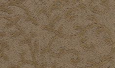 Gastonian style carpet in Rich Tobacco color, available wide, constructed with Mohawk Wear-Dated SoftTouch carpet fiber. Textured Carpet, Patterned Carpet, Mohawk Flooring, Carpets, Color, Design, Style, Farmhouse Rugs, Swag
