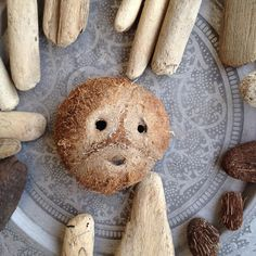 Back from the beach with a bunch of samples to work on new ideas !! #iseefaces #natural #nature #coconut #driftwood #wood #material #inspiration #island #islandlife #caribbean #beach #sea #westindies #martinique #antilles #inspiration #lightisvibe #ig_martinique