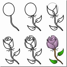 Rose on Pinterest | How To Draw, Rose and Step By Step