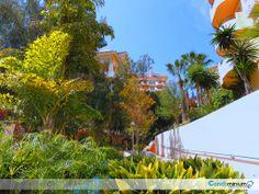 Community of Owners Puerto Banús 1 -Condolex.es -condominiumservices.es