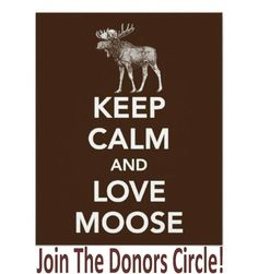 I think I do like moose...or mooses...or meese....does moose even have a plural form? Anyway, they're such big awkward seeming animals. I bet if they were people they'd be the nice guys...I don't think I've ever actually saw one before, I'll have to put that on my bucket list....I would have to make a bucket list, though, if I do I'll put that on it...if I remember to...I won't remember to...but anyway, I do like them....I think I really do.