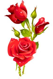 img art flowers flower art vector art red roses