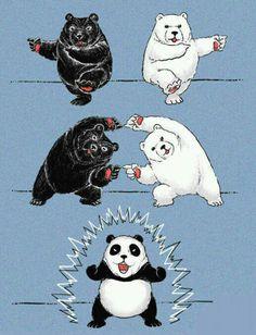 クマのフュージョン!