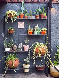 An Eclectic Home Brimming with Custom & Creative Touches in Los Angeles – Design*Sponge Garden Shelves, Plant Shelves, Smart Tiles, Up House, Cactus Y Suculentas, Metal Shelves, Plant Design, Garden Crafts, Outdoor Plants