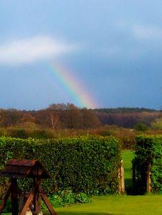 rainbows.....
