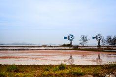 Moinho de vento by Lory Gomes