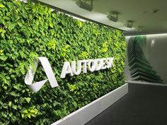 Ideas For Wall Green Office Plants Office Interior Design, Office Interiors, Office Wall Design, Corporate Interiors, Office Entrance, Office Lobby, Vertical Green Wall, Office Plants, Plant Wall