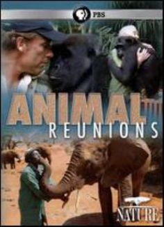Cover image for Animal reunions [videorecording (DVD)]