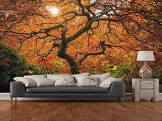 Autumn Trees wall mural room setting